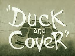 duckcover