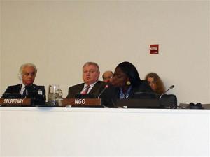 Dr. Omolade Oladejo, IPPNW Nigeria,  addresses delegates to the UN ATT 4th Prepcom, while Chairman Moritan (L) looks on.