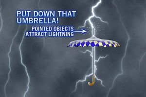umbrella lightning rod